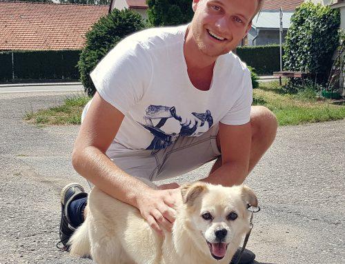 Wij. Rijswijk: hondenbelasting afschaffen